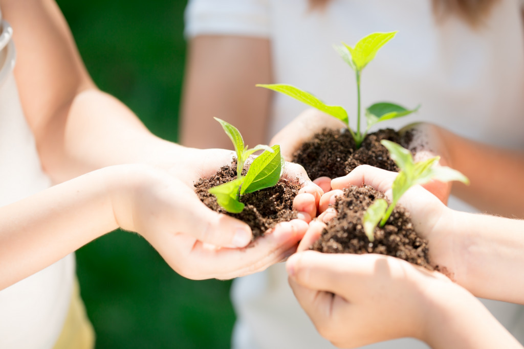 kids holding a sapling